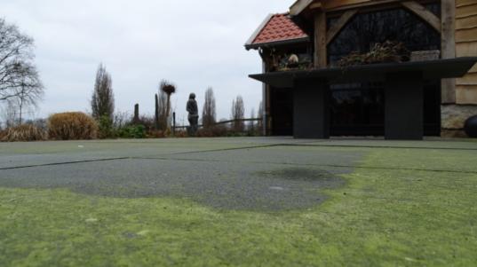Groene aanslag JR Tuinadvies en Ontwerp