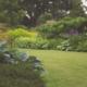 Planten Tuin Bemesting JR Tuinadvies en Ontwerp Hardenberg