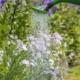 Sproei tuin