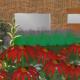 Tussenwoning planten tuinontwerp
